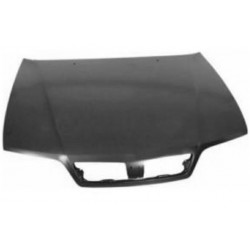 Front hood to Fiat Palio...