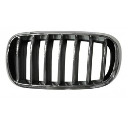 Grille screen right to BMW...
