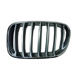 Grille screen front left...