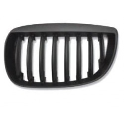 Grille screen left for BMW...