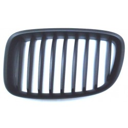 Grille screen left front...