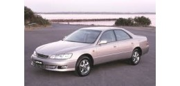 IS dal 1999 al 2005